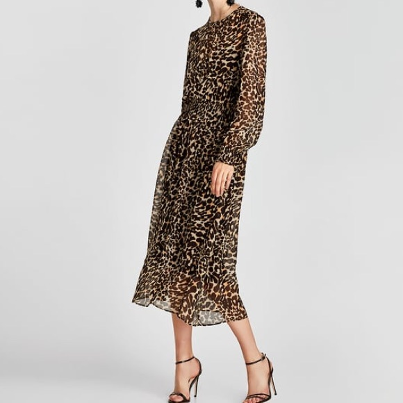 Zara Dresses Sheer Leopard Print Dress Szm Poshmark